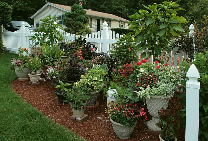 Container gardening for the renter for Large flower bed design ideas