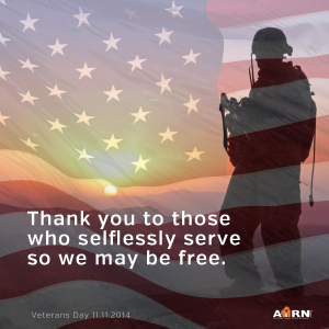 Veterans-Day 2014 Thank You from AHRN.com