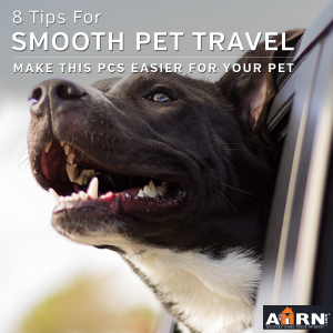 8 Tips For Pet PCS Travel