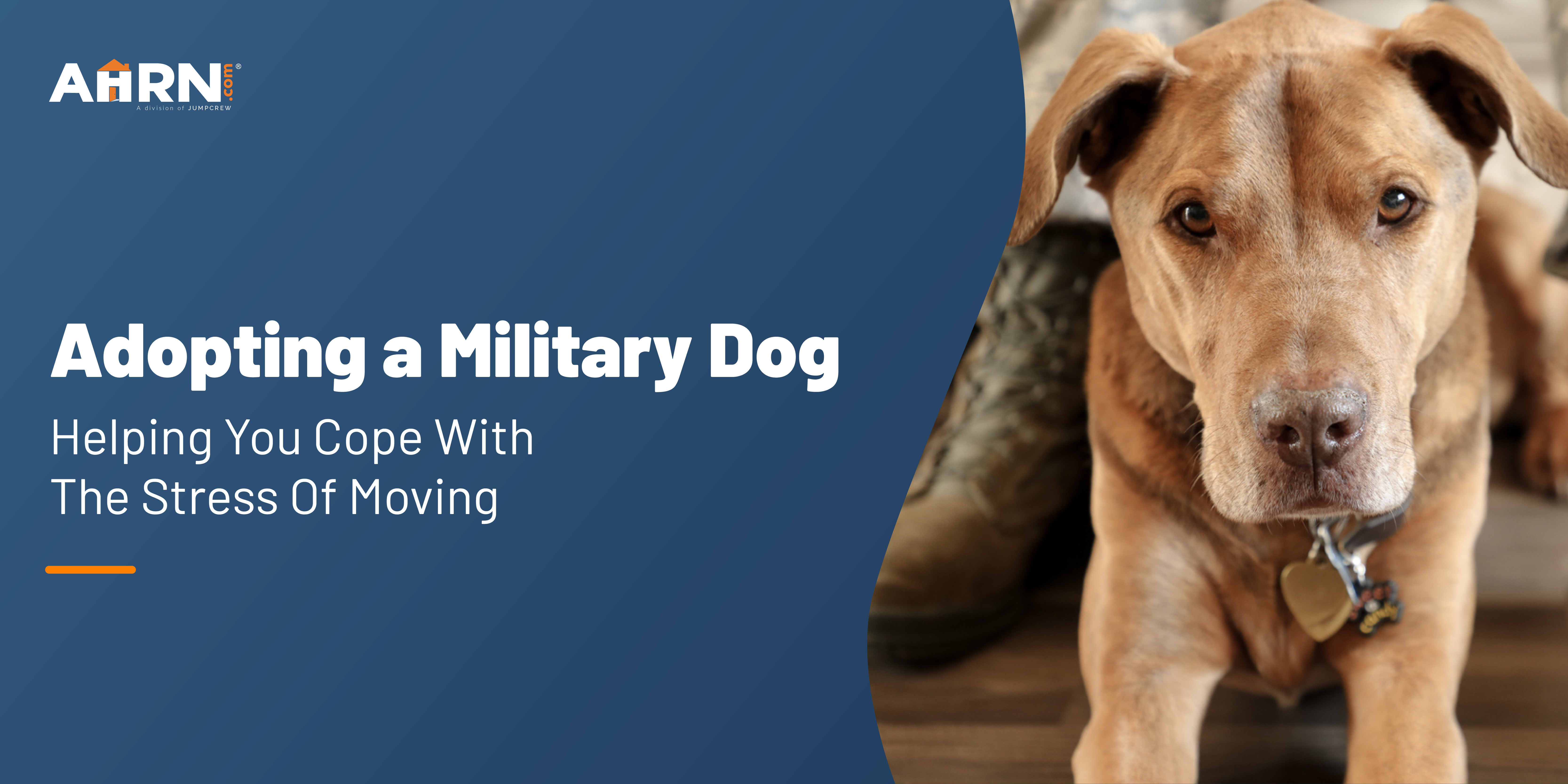 adopting a military dog