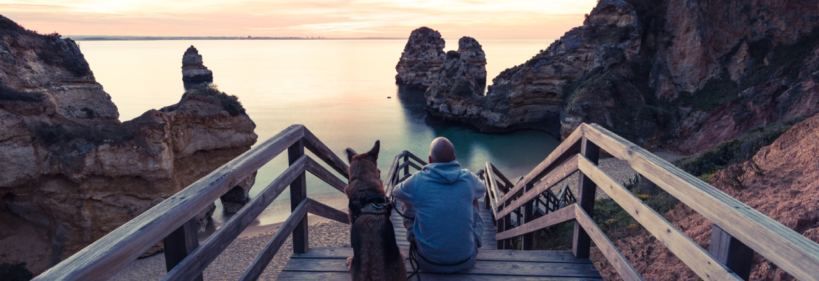 Tips for Moving Pets Overseas